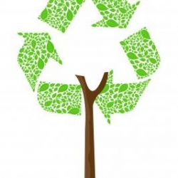 Your Legal and Environmental Responsibilities for Recycling – and Tips on How to Do it Properly