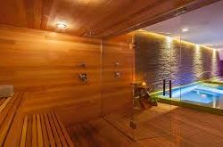 Wet and Dry Saunas – Understanding the Difference