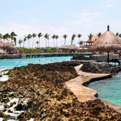 Top Foods You Have to Try In Mexico