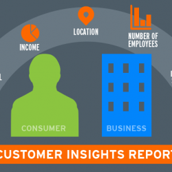 Why Are Customer Insights So Important Right Now?