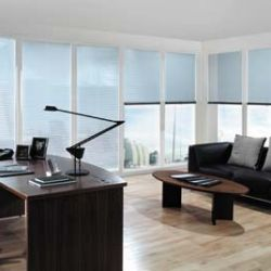 A Brief History and Some Types of Blinds